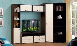 Набор мебели для гостиной Тандем №1