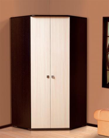 Шкаф 2-х дверный угловой «Тандем» Т/ШУ2-1000 - фото №1